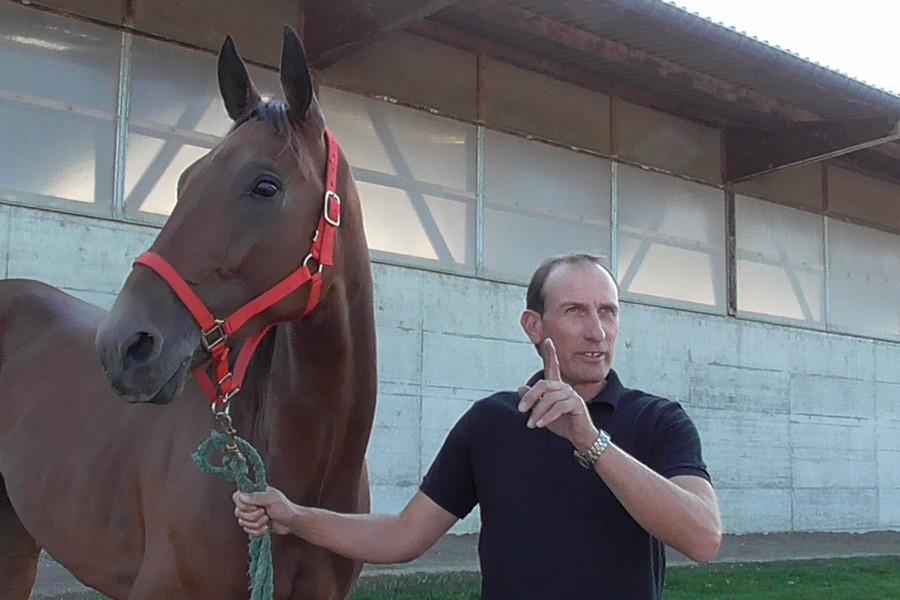 ufland cheval photos