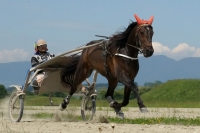 Details Kategorie: Avenches-Training, 8.5.2020